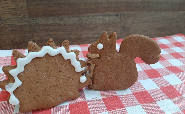 Gingerbread picnic cookies